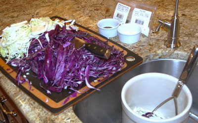 DIY Sauerkraut Recipe