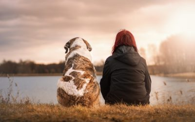 How to Heal Loneliness